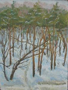 Winter. Snow and trees. 2005