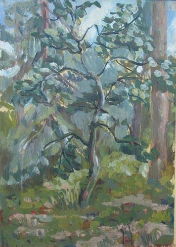 Яблоня,2000